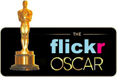 Flickr Photo Oscar 2016